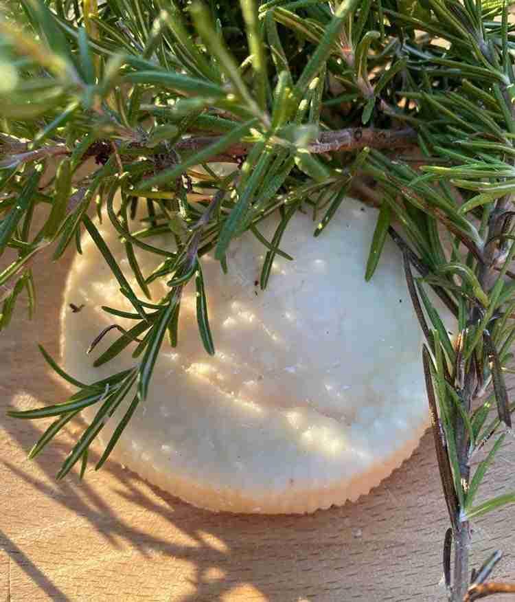 formaggio capra pesto olea prilis